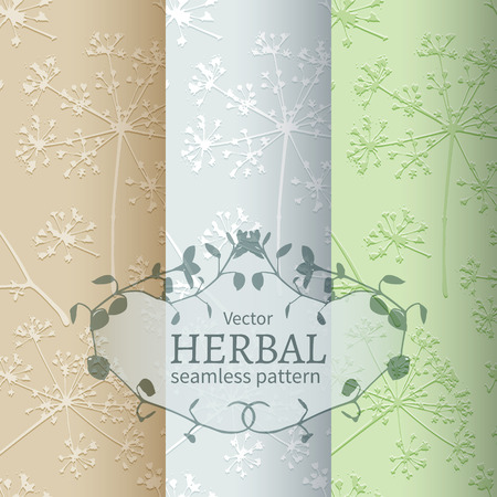 umbel: Set of 3 seamless pattern with embossed delicate umbrellas parsley or dill on a light beige, gray and green background