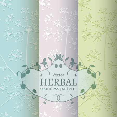 umbel: Set of 3 seamless pattern with embossed delicate umbrellas parsley or dill Illustration