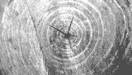 brutal: Black and white brutal grunge background texture saw cut of the wood