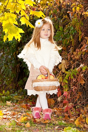 Beautiful long-haired blond girl with white daisy in her hair and a basket of ripe apples in her hand Stock Photo