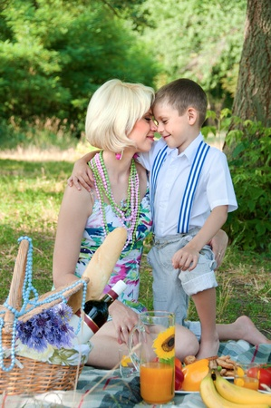 Happy family on a picnic  The son embraces mother  Stock Photo