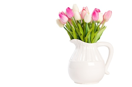 inexperienced: white tulips in a vase on a white background
