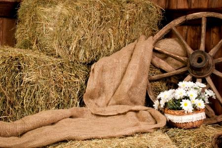 Interior rustic farm  hay wheel and daisy in basket  Stock Photo