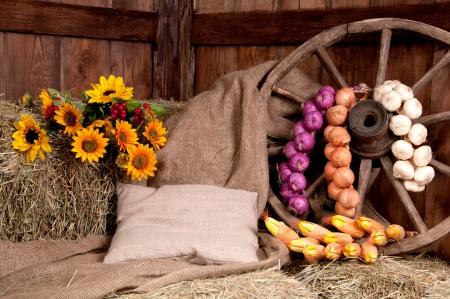 Interior de una granja rural - heno, rueda, ajo, cebolla, girasol Foto de archivo - 20447498