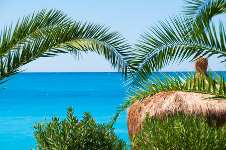 Thatched roof bungalows on a background of blue sea and palm trees photo