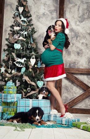 pregnant woman in suit with a pin up dog near christmas tree stock photo