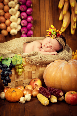 A cute newborn in a wreath of berries and fruits sleeps in a basket. Autumn harvest. Stock Photo