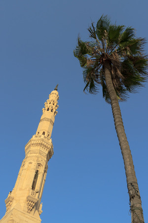 alexandria egypt: A mosque and palm in Alexandria, Egypt