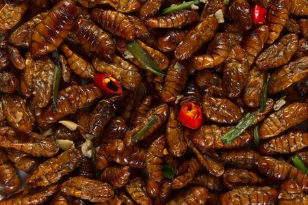 larvae: Fried edible spicy larvae background Stock Photo