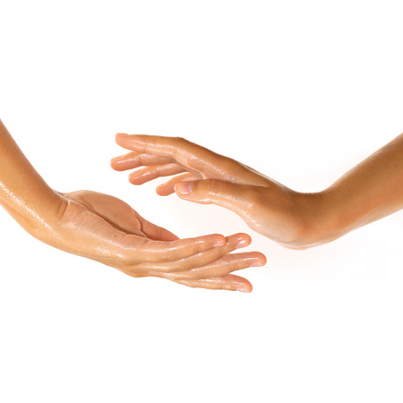 Close-up of female hands while applying oil on white background view 1 Stock Photo