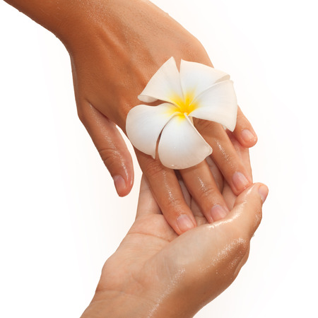 eco sensitive: Close-up of female hands in oil holding magnolia flower on white background view 1