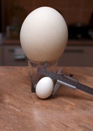 bring: Big ostrich egg and chicken egg in glasses on table Stock Photo