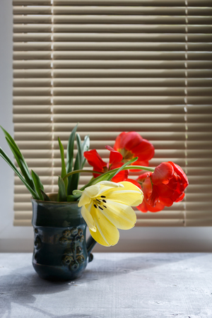 louver: Bouquet of red and yellow spring tulips in beautiful ceramic vase against window with louver shutter, close up selective focus