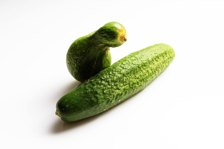 Different shape funny fresh cucumbers on white background. Horizontal view