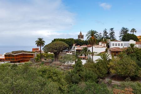 ICOD de los Vinos skyline, Tenerife, featuring famous Aincient Dragon Tree