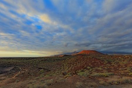 Tenerife desert near Palm Mar with spurge bushes at sunset Reklamní fotografie