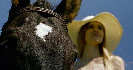 young blonde woman is standing near horse, close-up of animal muzzle