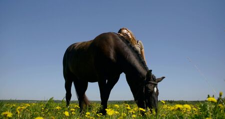 young woman in grey t-shirt stands leaning on horse in endless yellow dandelion field under deep blue summer sky