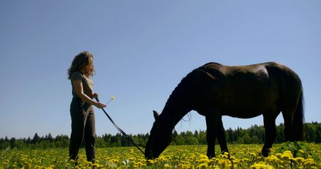carefree teen girl is holding reins of horse standing on lawn Stock fotó