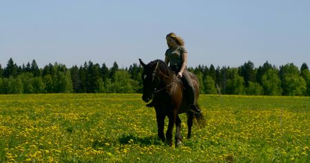 young lady with loose hair rides black horse on flower field Stok Fotoğraf
