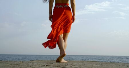 Young long-haired beautiful girl who is on the background of the sea and the sky, she wears a top and a long Oriental skirt. She walks along the shore to the sea, the view from the back