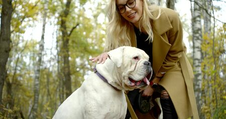 female dog owner is stroking her bulldog and playing with him in forest in fall day Zdjęcie Seryjne