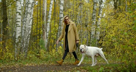 young woman and her white bulldog are walking together in park in autumn day