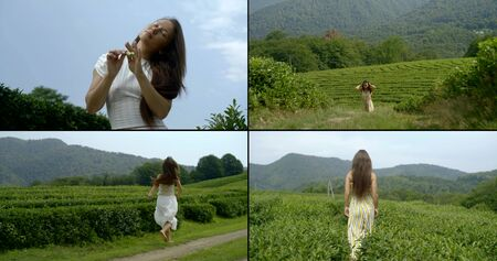tea garden in summer time, woman is walking and viewing nature, collage of four videos Banco de Imagens