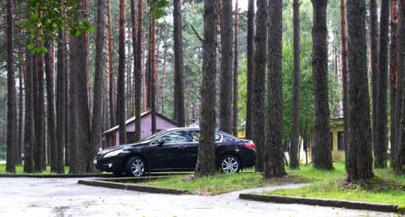 Grodno, Belarus - 07.27.2017: Peugeot coming out of the trees Editorial