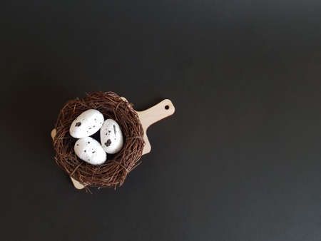 Eggs in a nest of branches on a black isolated background