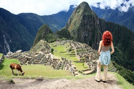 llama: Tourist storico citt� perduta di Machu Picchu - Per� Archivio Fotografico