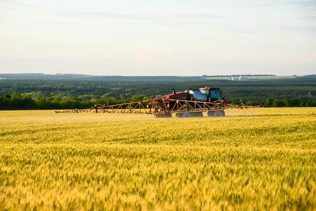 Spraying fertilizer fields with wheat Stock Photo