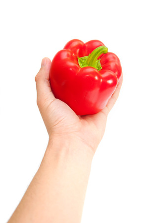 Fresh red pepper in hand Isolated on white background