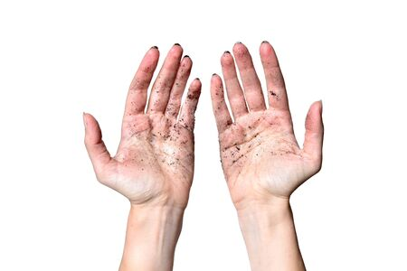 Dirty woman hands on a white background. Hands of a girl farmer in the ground on white, isolated.