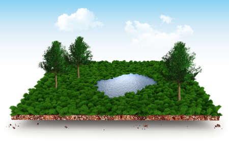Section of soil layers with meadow, trees and lake 3d illustration
