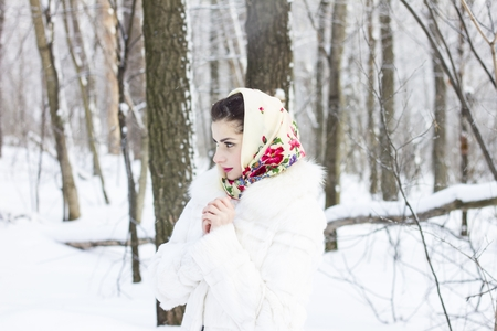 Winter portrait of a girl Stock Photo