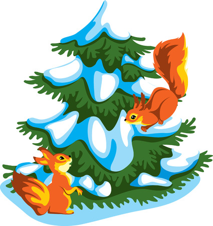 squirrels on a snow-covered fir-tree Vector