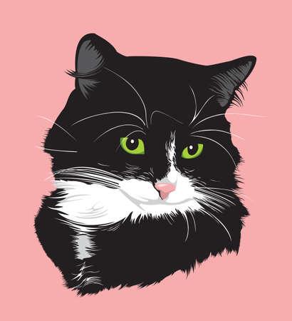 silhouette chat: Portrait d'un chat noir aux yeux verts