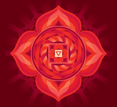 Mandala for meditation, a Muladhara concept design. Illustration