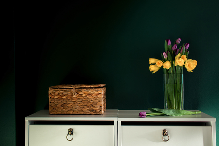 yellow daffodil flowers with pupple tulip blooming in vase with green wall next wicked basket Stock Photo