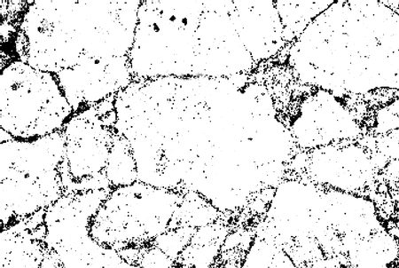 Subtle black halftone vector crack texture overlay. Monochrome abstract splattered white background. Dotted grain black and white gritty grunge backdrop. Dot and circle dirty effect Vettoriali