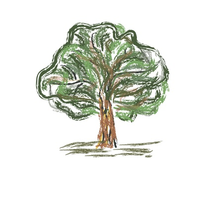 Colorful old tree . Sketch fast pencil hand drawing illustration in funny doodle style