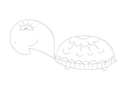 Doodle Sketchy turtle Vector Illustration Vector