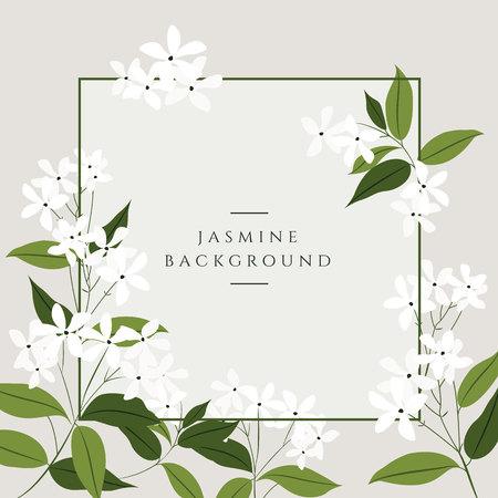 Vektor-Jasmin-Blumen-Banner. Design für Tee, Naturkosmetik, Schönheitssalon, Bio-Gesundheitsprodukte, Parfüm, ätherisches Öl, Aromatherapie. Kann als Grußkarte oder Hochzeitseinladung verwendet werden