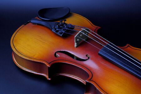 The top deck of the violin with strings and fine tuning on a dark background, the concept of musical education or classical music, a musical instrument.