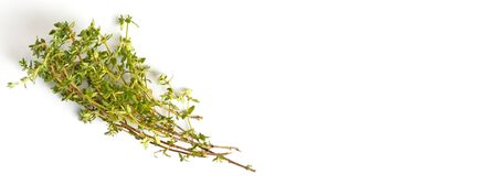 Thyme sprigs on a white background, close-up, flat lay, copy space, top view.