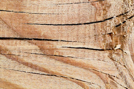 Surface pattern of treated wood as a background, natural cracks.