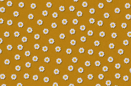 flowers pattern of daisies on a orange background. Фото со стока
