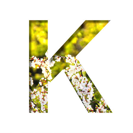 Spring sunny font. The letter K cut out of paper on the background of blooming cherry on a sunny spring day. Set of decorative natural fonts.