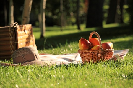 hamper: Picnic basket with fruits on grass in summer park